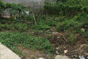 Chủ kẹt tiền cần bán lô đất tại khu dân cư phườngHiệp Bình Phước,Quận ThủĐức